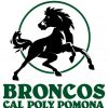 CalPoly Pomona: Factory Smackdown!